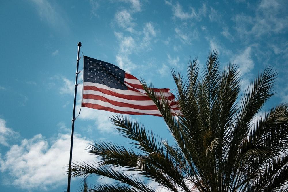 raised US flag near tree
